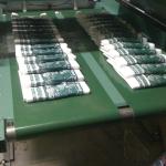 Полиэтиленовые пакеты ОПТ